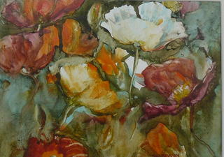 'Tall Poppy' by Jan Thomson (SOLD)