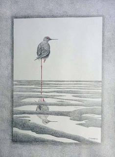 'Living on the Edge - Black Stilt' by Janet Marshall