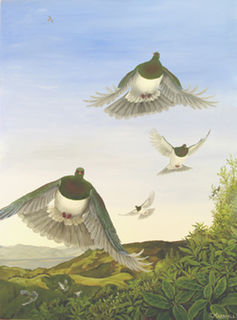 'Wings over Riwaka - Kereru' by Janet Marshall