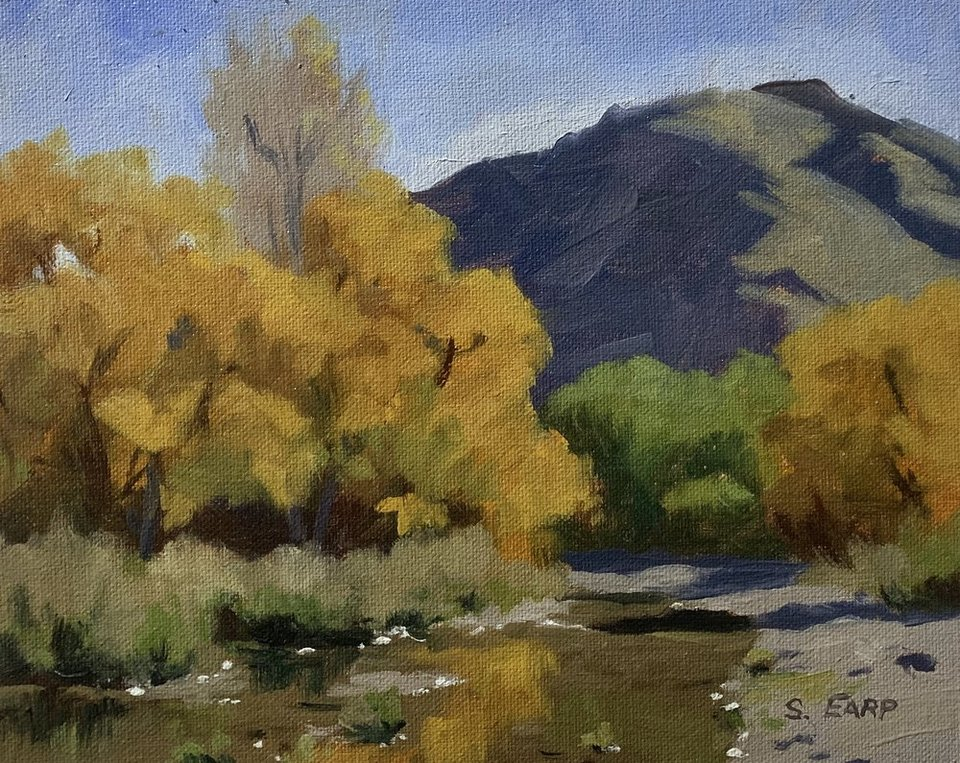 'Autumn Willow Trees Arrowtown' by Sam Earp